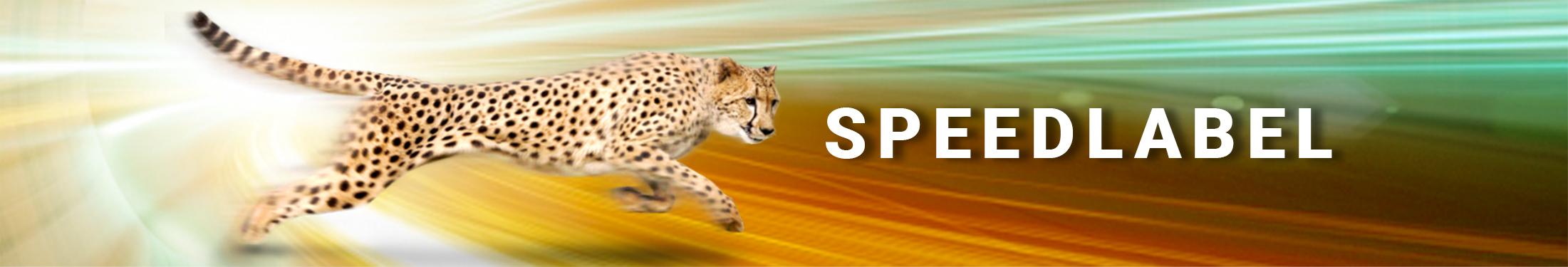 Speedlabel Service Innovastore International